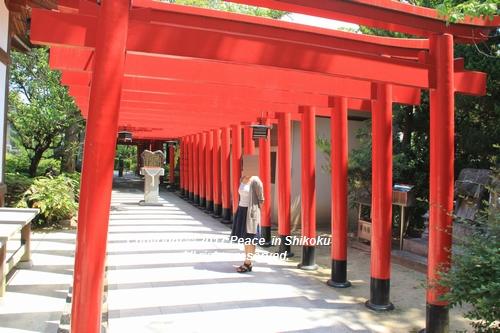 tamura-0529-9682.jpg