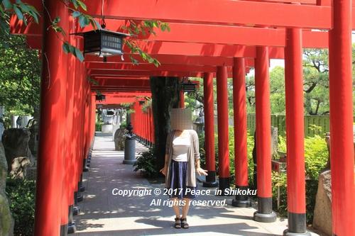 tamura-0529-9703.jpg