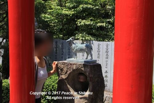 tamura-0529-9708.jpg