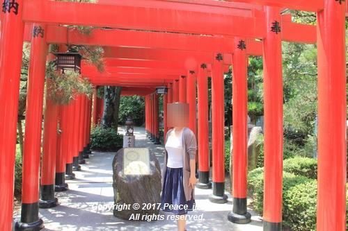 tamura-0529-9710.jpg