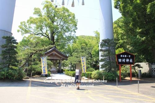tamura-0529-9731.jpg