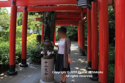 tamura-0529-9744.jpg