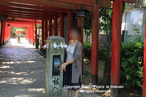tamura-0529-9748.jpg