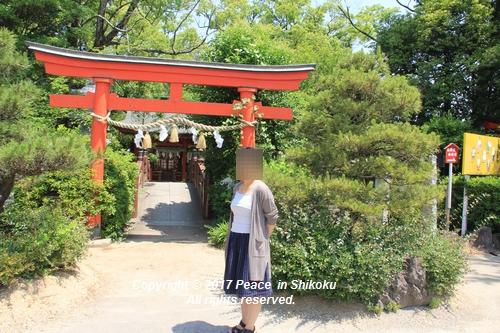 tamura-0529-9757.jpg