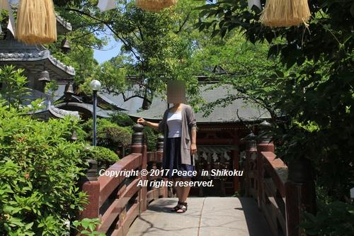 tamura-0529-9758.jpg