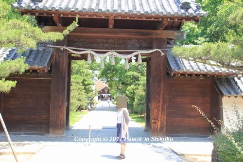 tamura-0529-9766.jpg