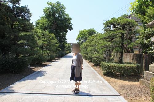 tamura-0529-9768.jpg