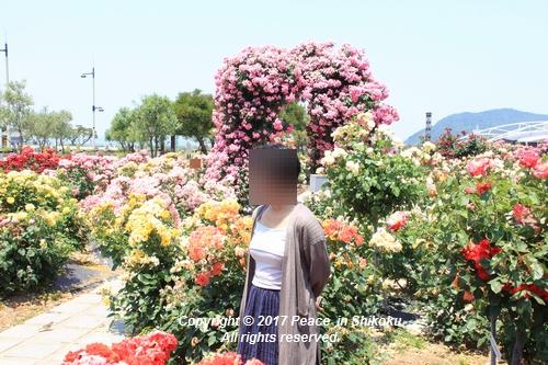 tamura-0529-9796.jpg