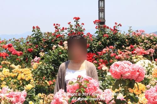 tamura-0529-9806.jpg