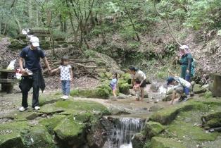 水の森002