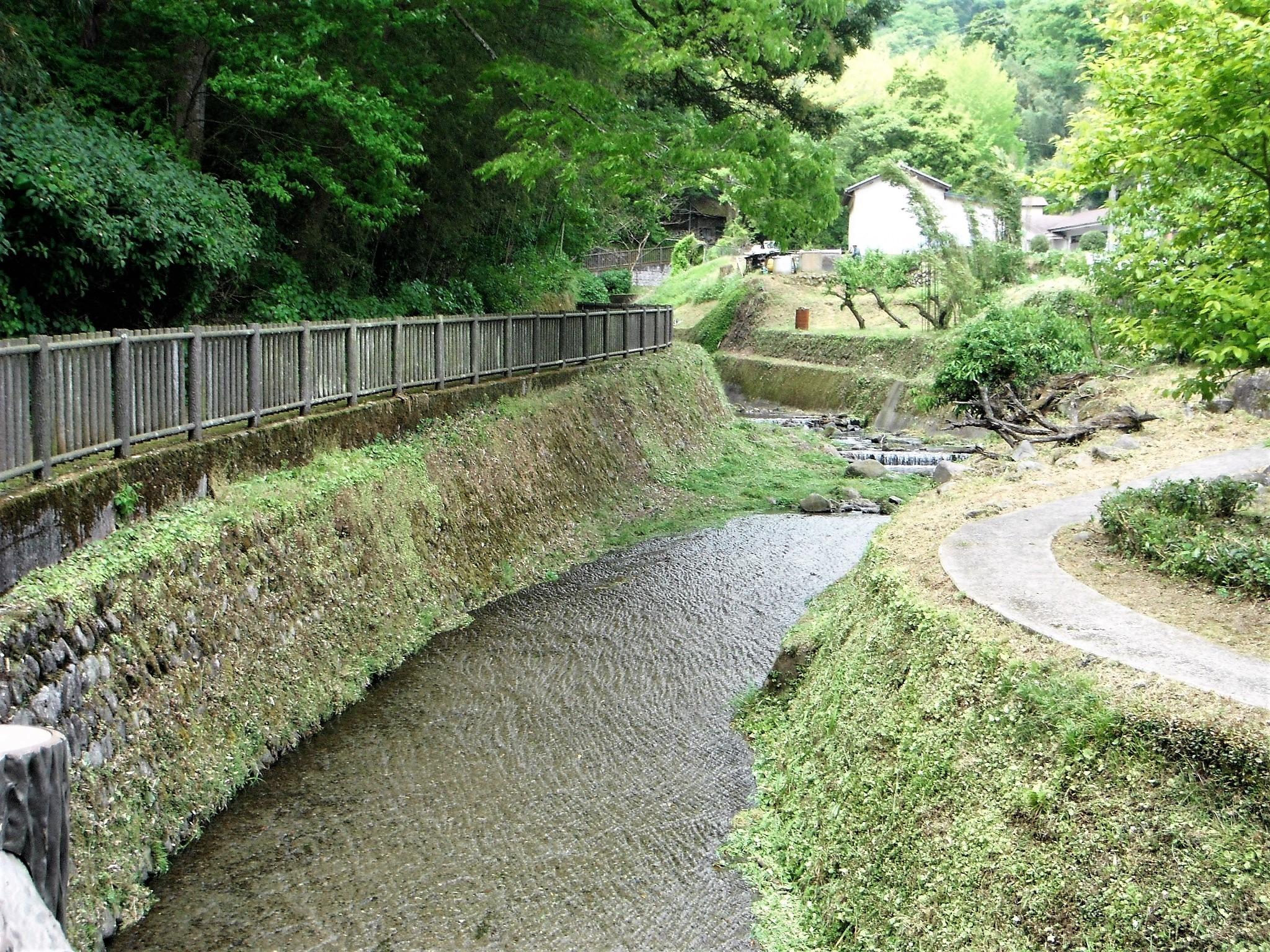 洒水の滝5