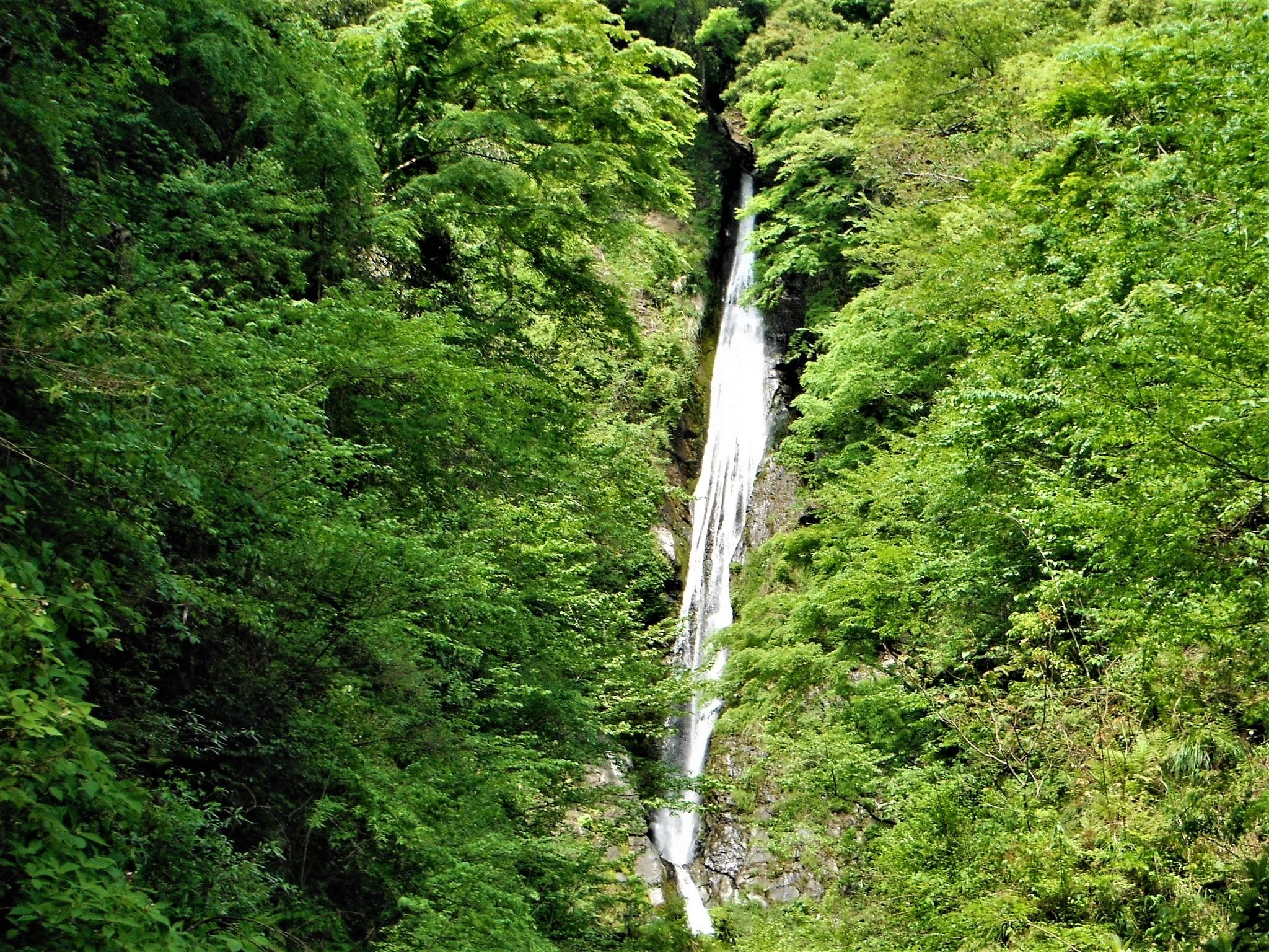 洒水の滝11