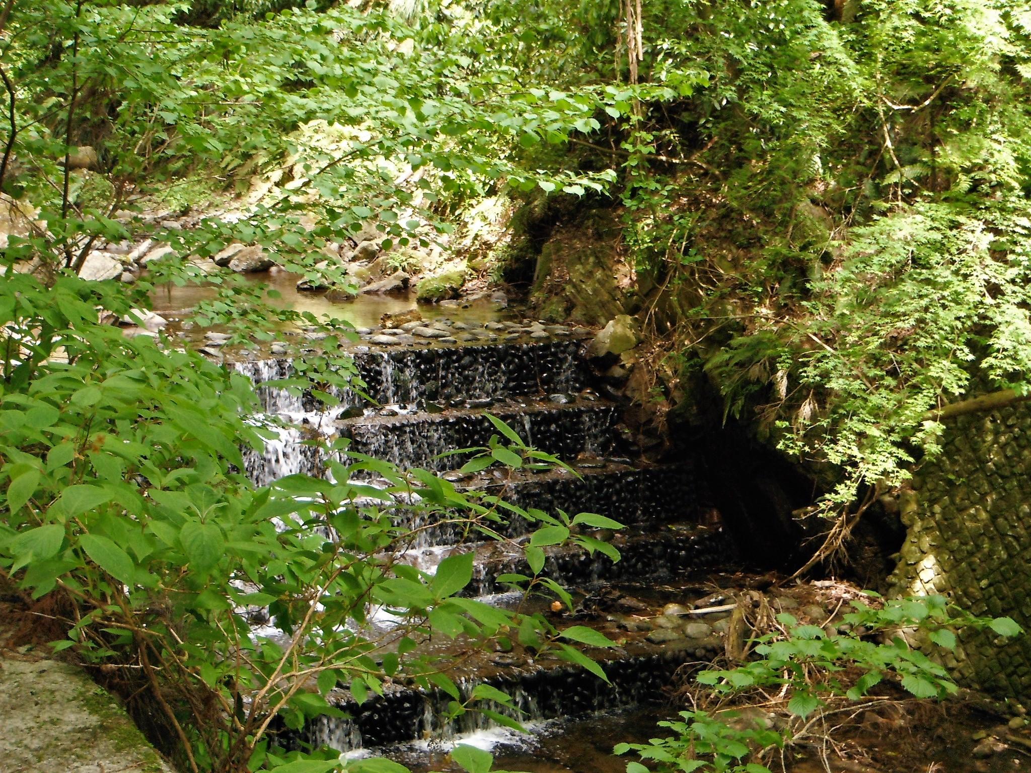 洒水の滝10