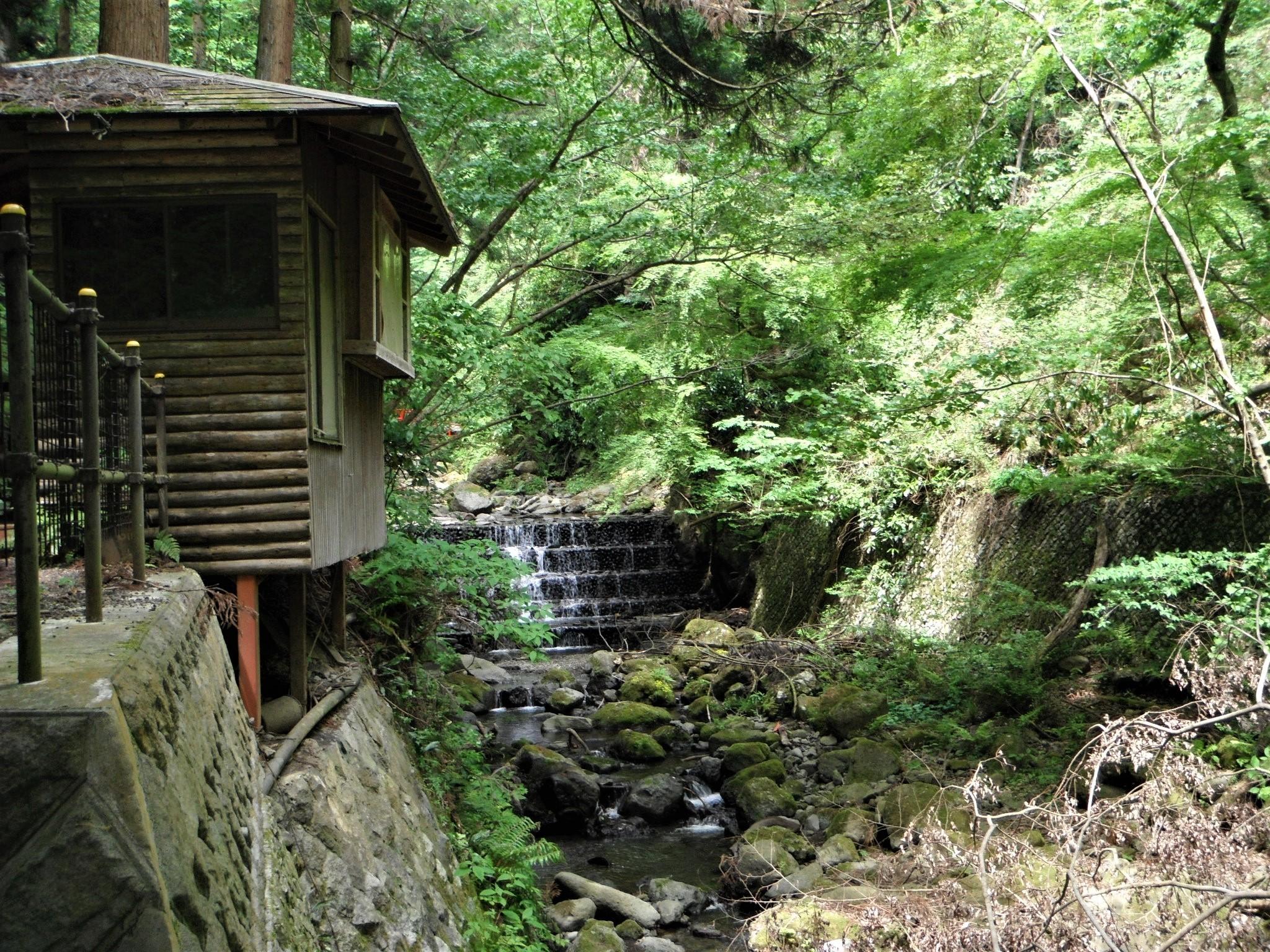 洒水の滝8