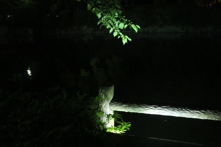 街灯写真9