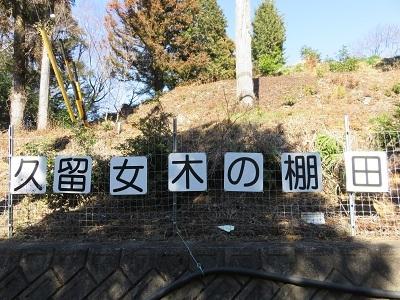 IMG_4610 棚田