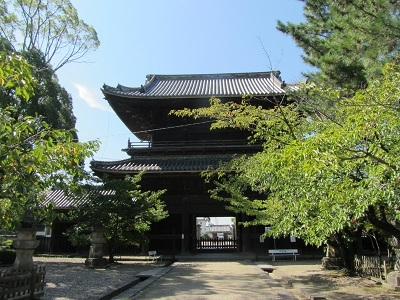 IMG_7941 大樹寺