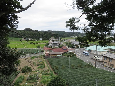 IMG_0371 左馬武神社