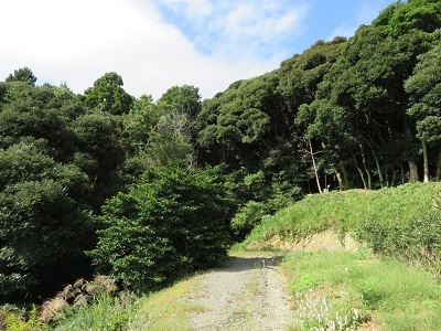 IMG_0444 舟ヶ谷の城山