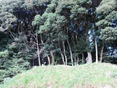 IMG_0446 舟ヶ谷の城山