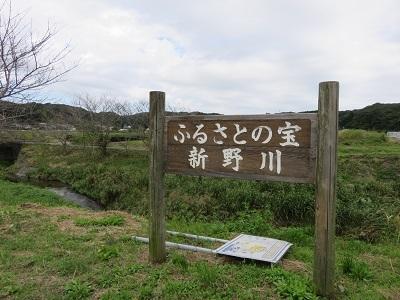 IMG_0388 新野川