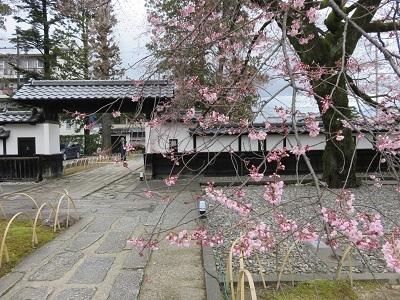 IMG_6574 飯田城