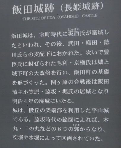 IMG_6591 飯田城