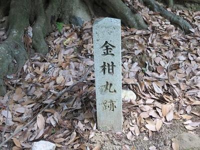 IMG_8578 金柑丸跡