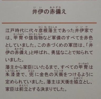 IMG_6059 赤備え
