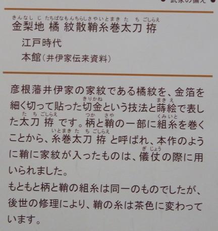 IMG_6070 太刀