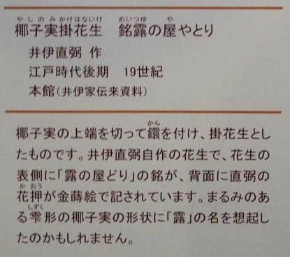 IMG_6083 花生