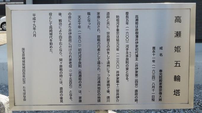 IMG_8819 高瀬姫