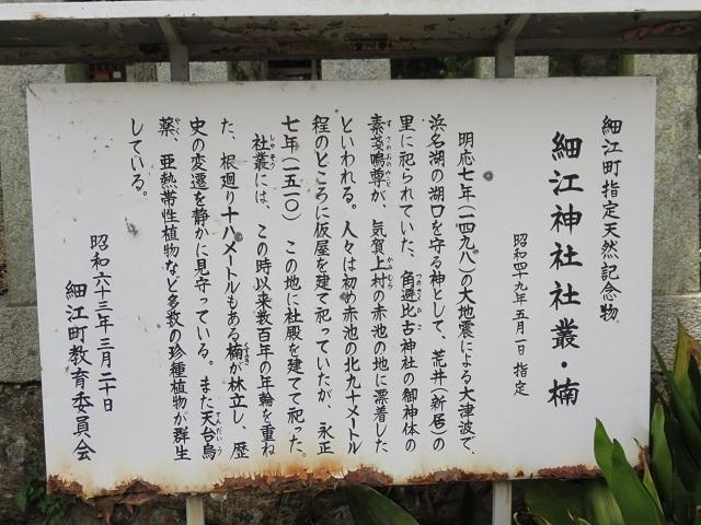 IMG_7948 細江神社