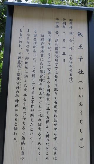 IMG_9860 飯王子社