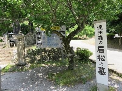 IMG_9933 石松の墓