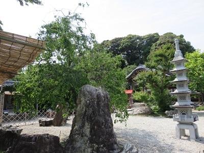 IMG_0024 石庭