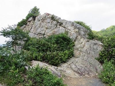 IMG_6549 西行岩