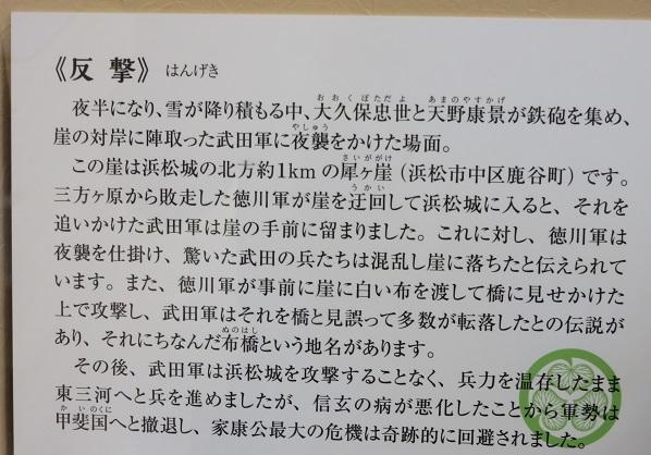 IMG_7850 反撃