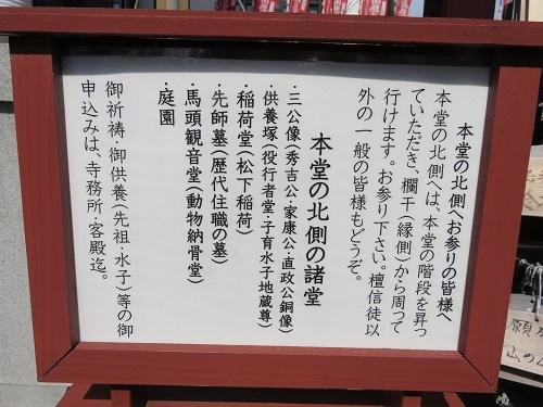 IMG_4455 頭蛇寺