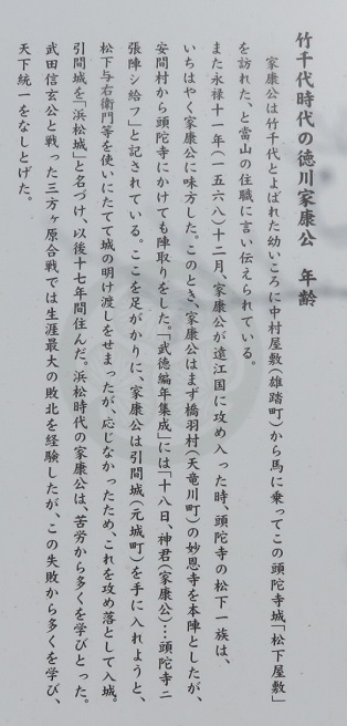 IMG_4459 家康