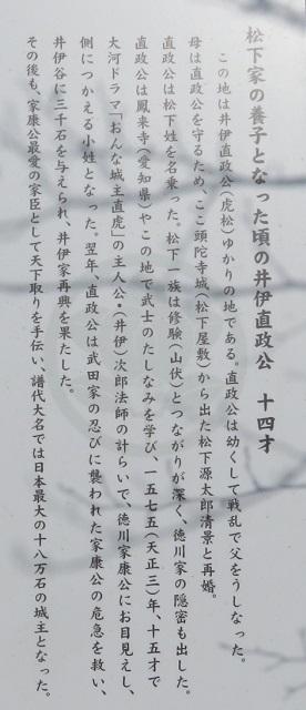 IMG_4459 直政
