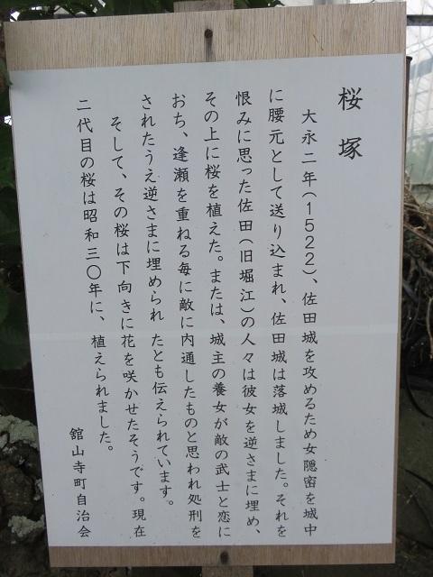 IMG_0567 桜塚