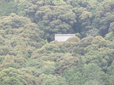 IMG_0981 高根神社