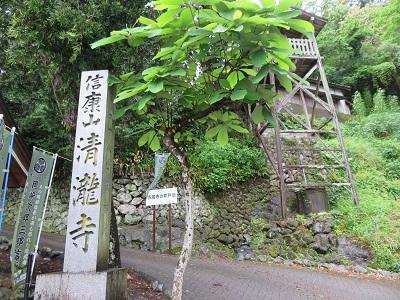 IMG_9017 清瀧寺