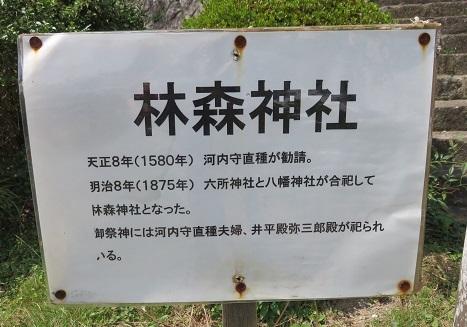 IMG_1435 林森神社