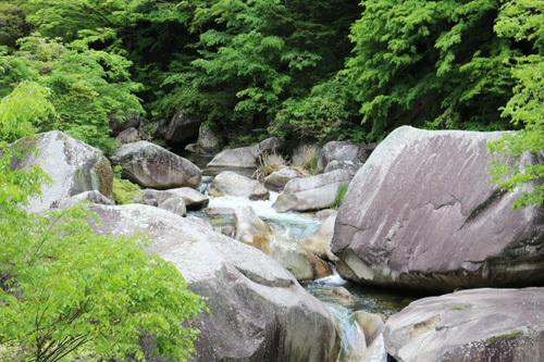 20170514昇仙峡 渓谷道 (7)