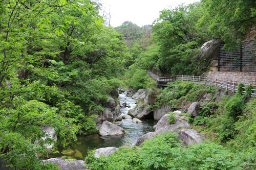 20170514昇仙峡 渓谷道 (4)