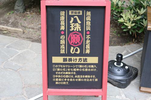 20170618昇仙峡 八珠願い (2)
