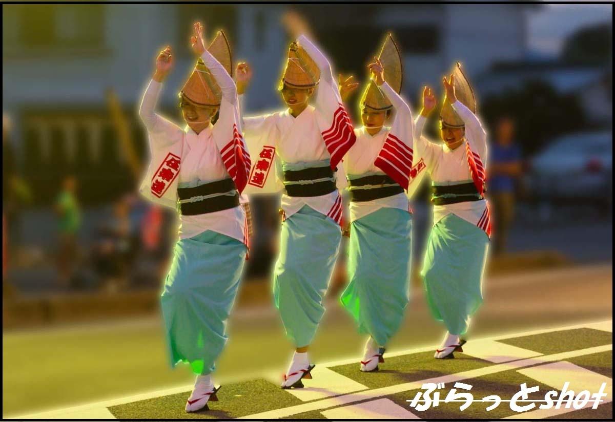 DSC_9487-1.jpg