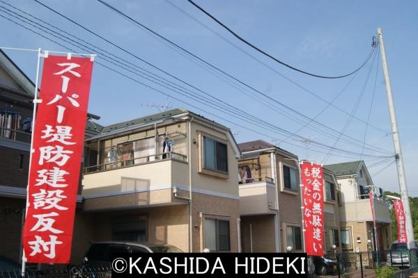 篠崎地区。スーパー堤防反対。